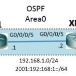 IOS XR : OSPFv2(IPv4)/OSPFv3(IPv6) 設定