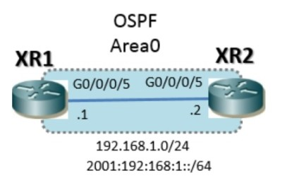 xr_ospf_basic